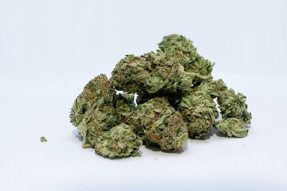 Cannabis toppen
