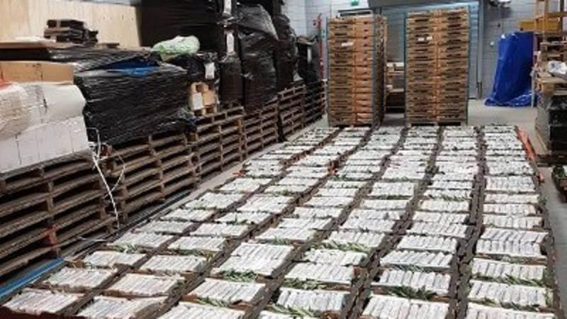 cocaïne Oudenbosch