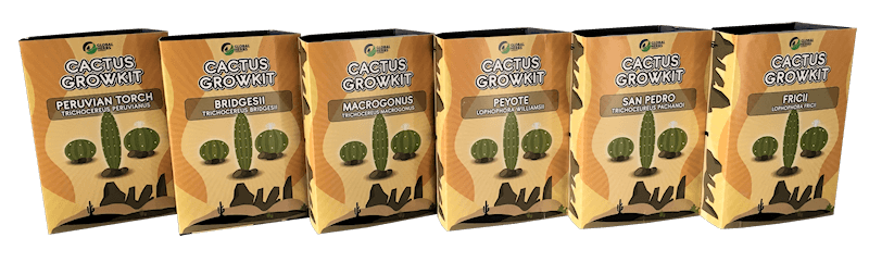 Cactus growkit