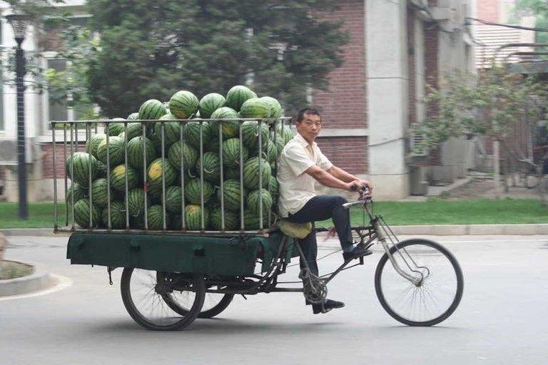Meloen transport