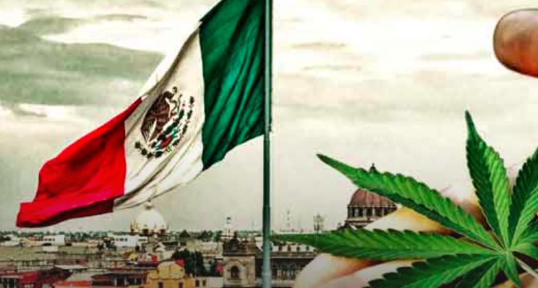 Mexico legaliseert cannabis