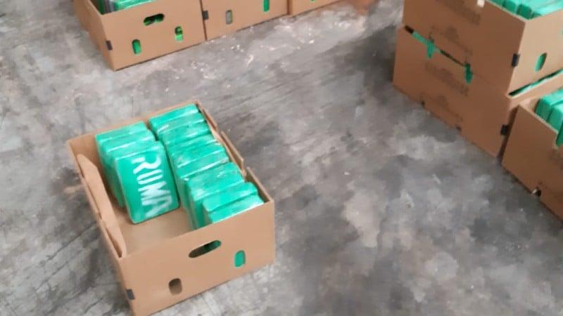 Cocaïne in Antwerpen