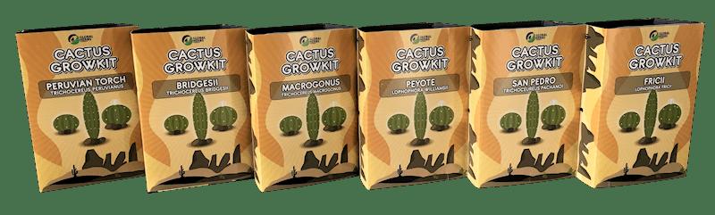 Cactus kweek