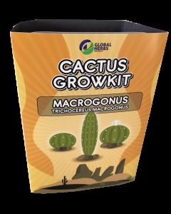 Cactus growkit Macrogonus