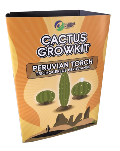 Cactus growkit Peruvian Torch