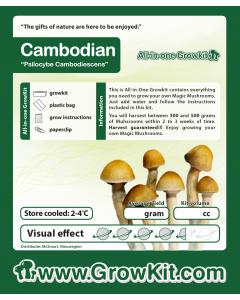 Paddo growkit Cambodian 2100 cc