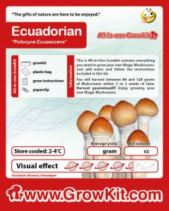 Paddo growkit Ecuadorian 1200 cc