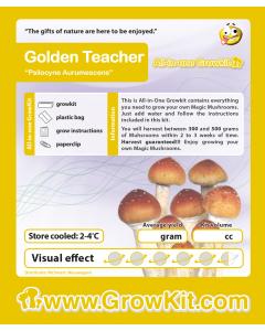 Paddo growkit XXL Golden Teacher 2100 cc
