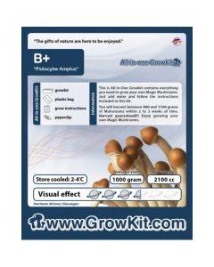 Paddo growkit B+ 2100 cc