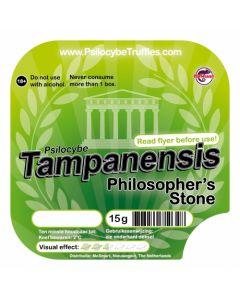 Magic truffels Tampanensis