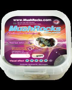 Magic truffels MushRocks 15 gram