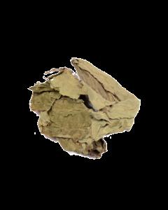 Salvia divinorum per kilo