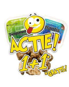 "Magic Truffles Tampanesis + Atlantis Actie ! ""1+1"" 10g"