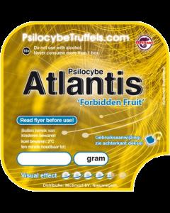 Magic truffels Atlantis
