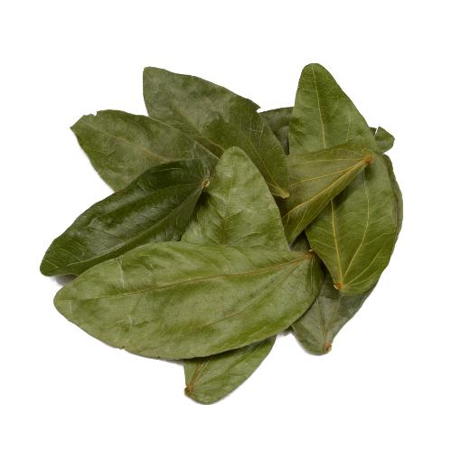 Calliandra angustifolia - Bobinsana - Bladeren
