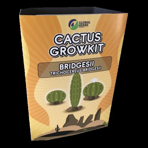 Cactus growkit Bridgesii