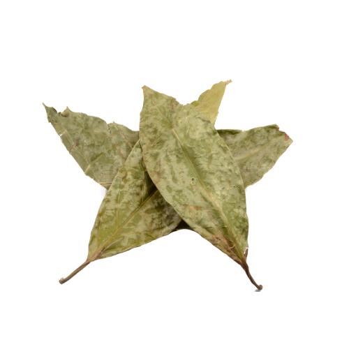 Chaliponga bladeren gedroogd