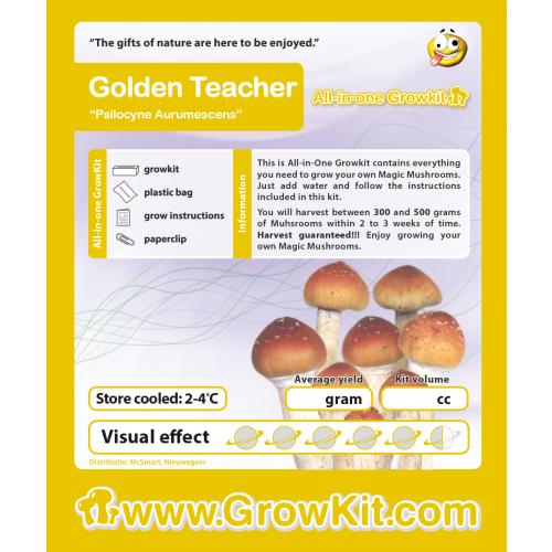 Paddo Growkit Golden Teacher
