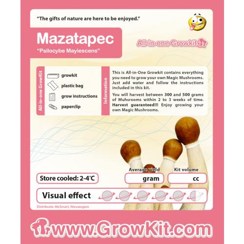 Paddo growkit Mazapatec