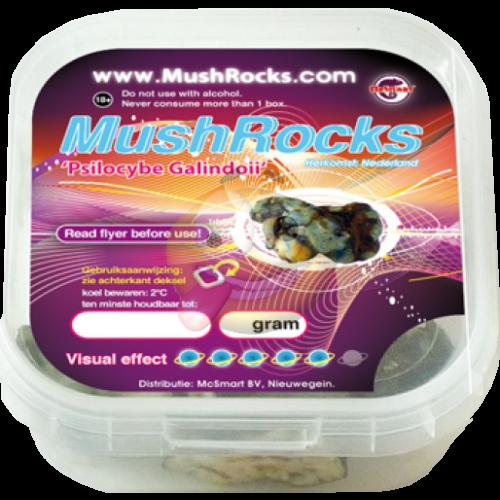 MushRocks truffels 20 gram