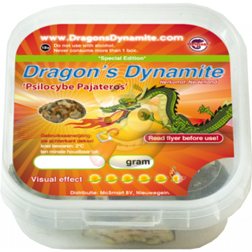 Psilocybe Dragons Dynamite truffels